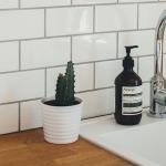 Ako vyčistiť umývačku riadu – tipy a triky na domáce čistenie
